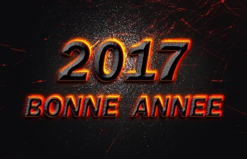 bonne-annee-2017-effet-de-feu.jpg